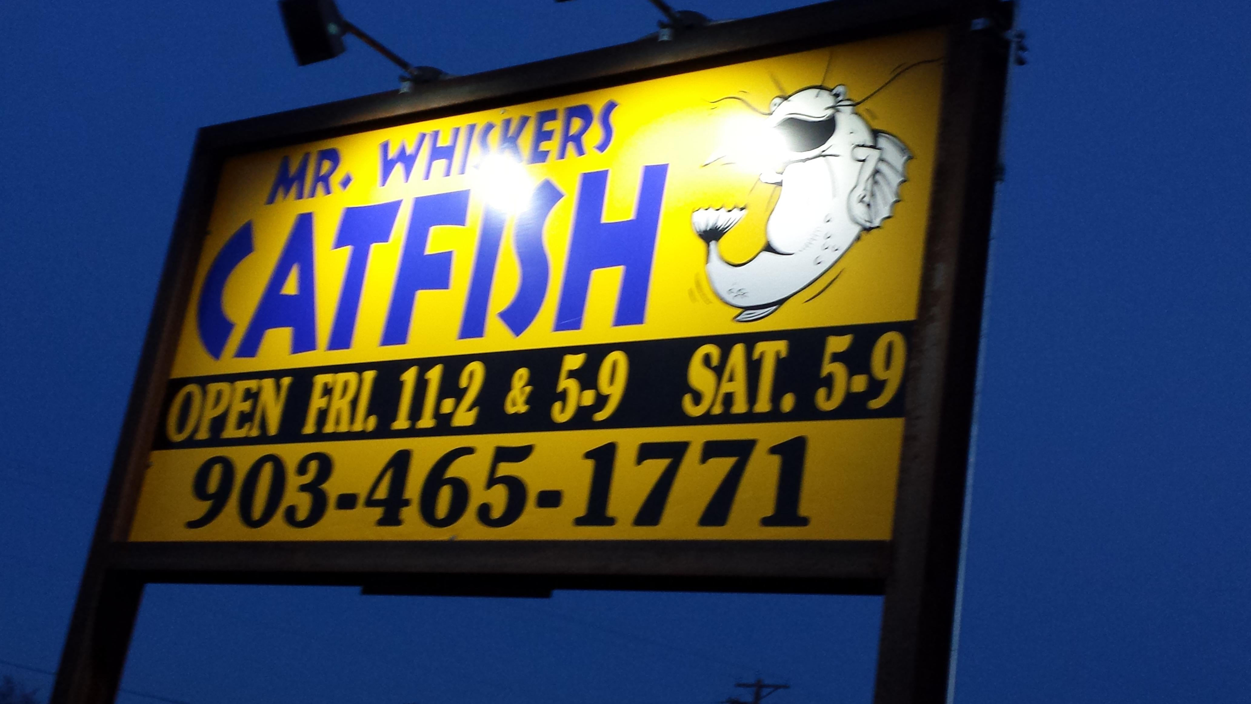 Mr Whiskers Catfish