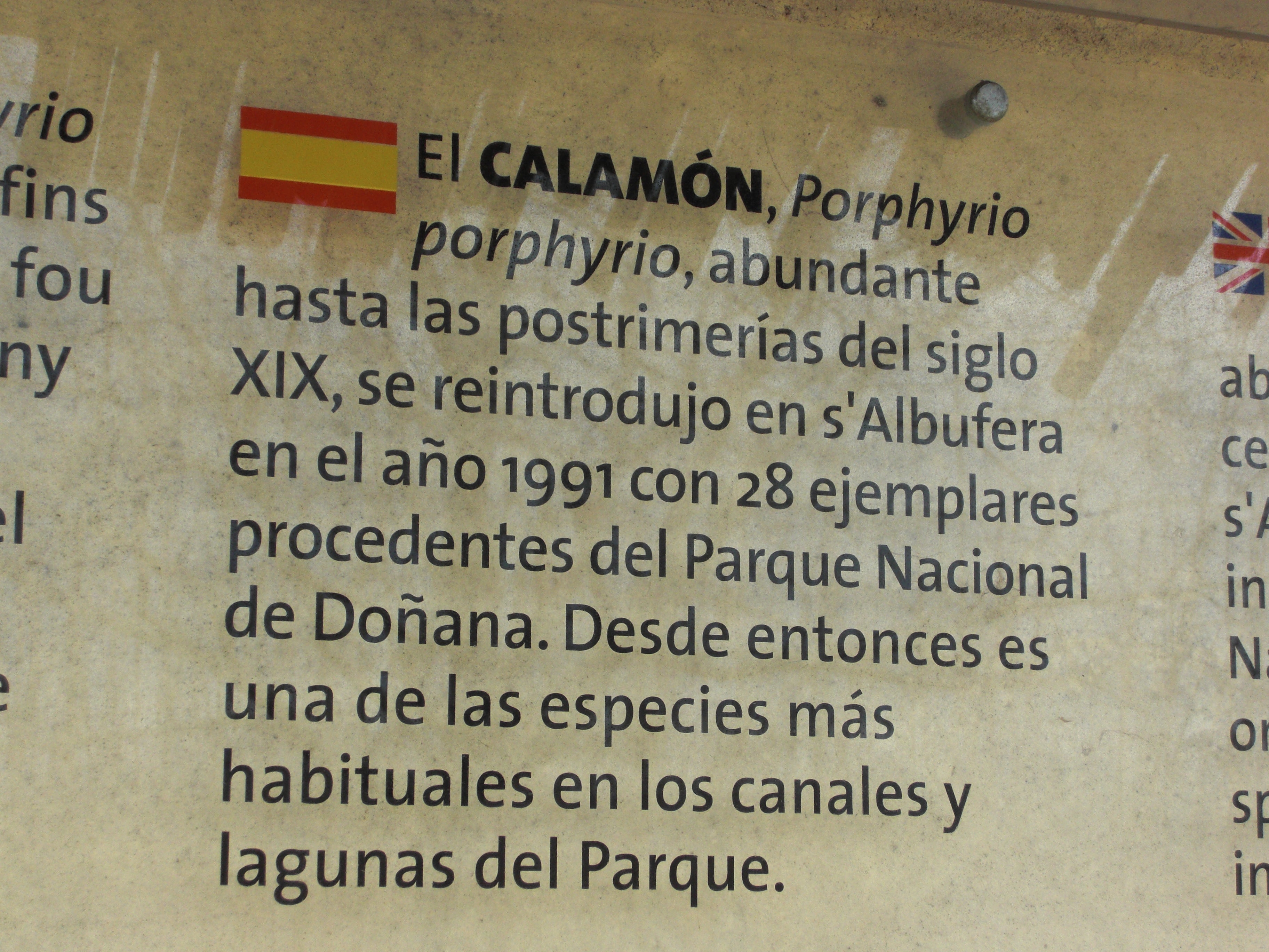 Commemorative Plaque in Albufera Natural Park