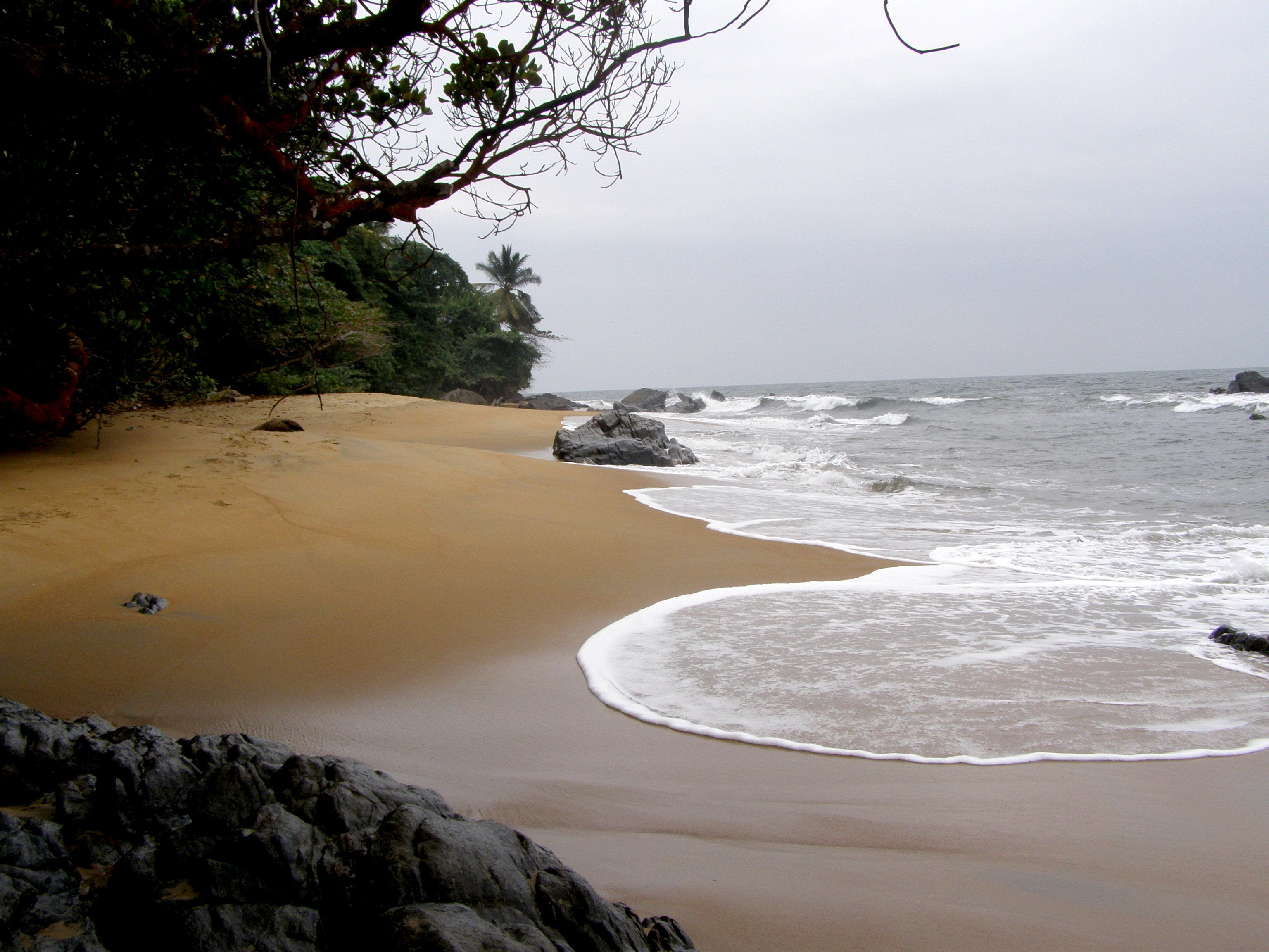 South Coast of Cameroon