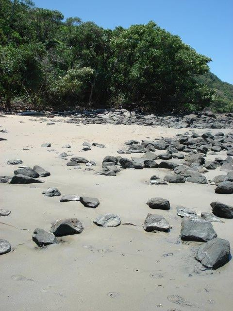 Piedra en Cape Tribulation