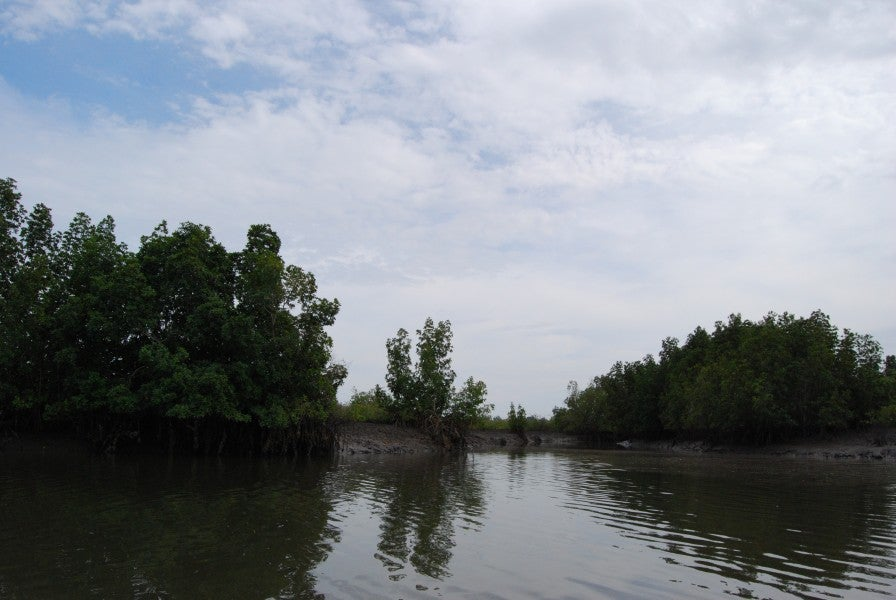 Río Gambia