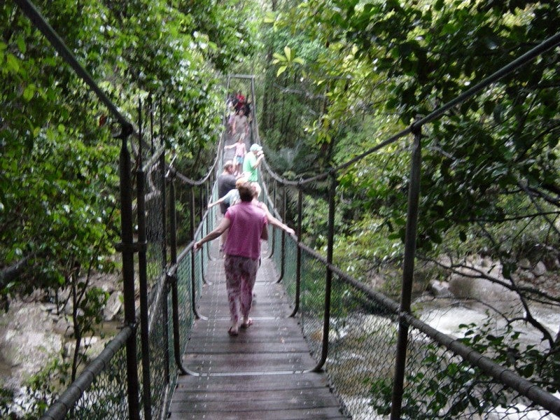 Puente en Cape Tribulation