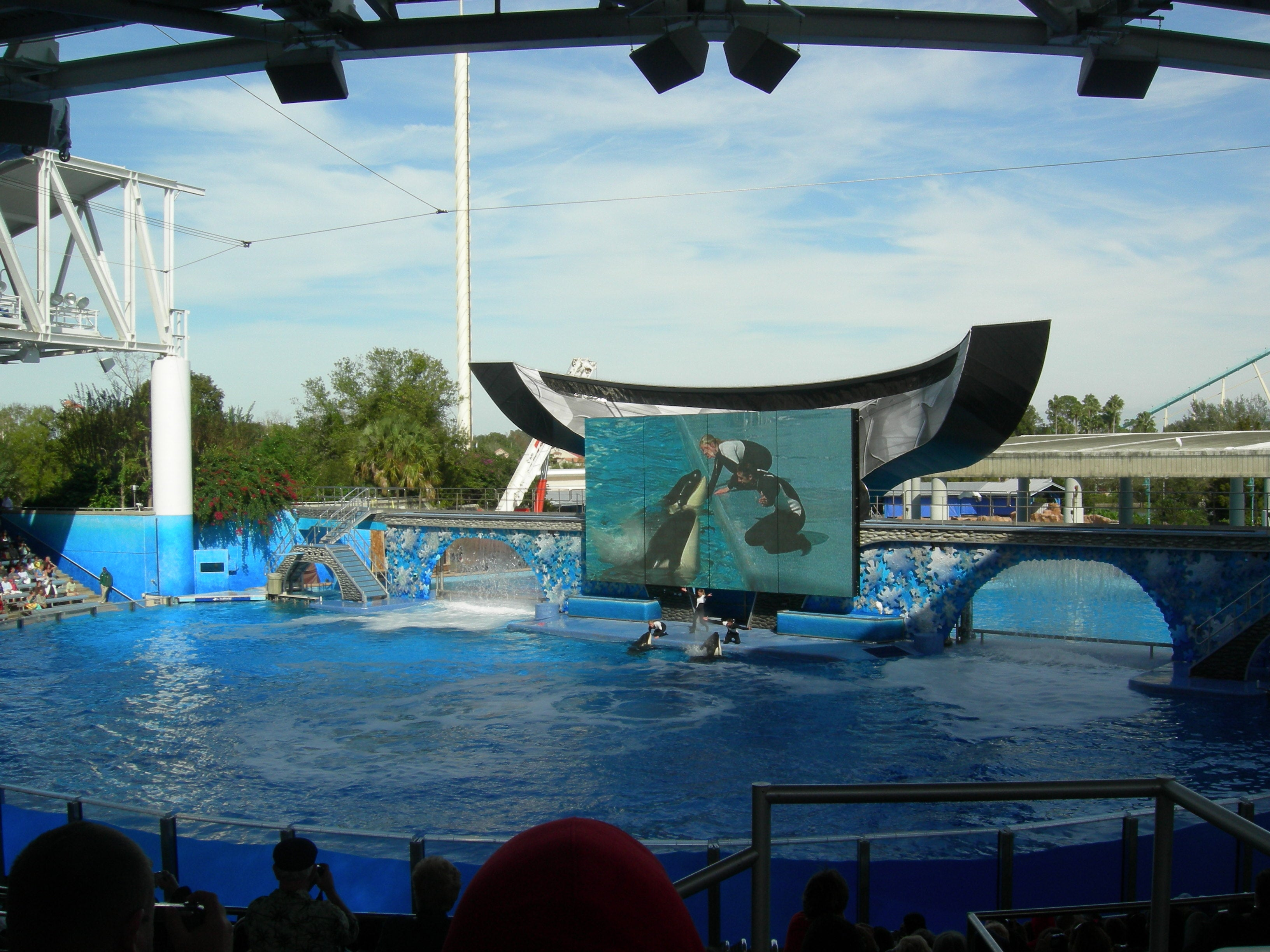 Mar en Sea World Orlando