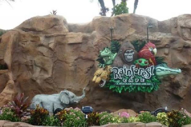 Roca en Downtown Disney Area