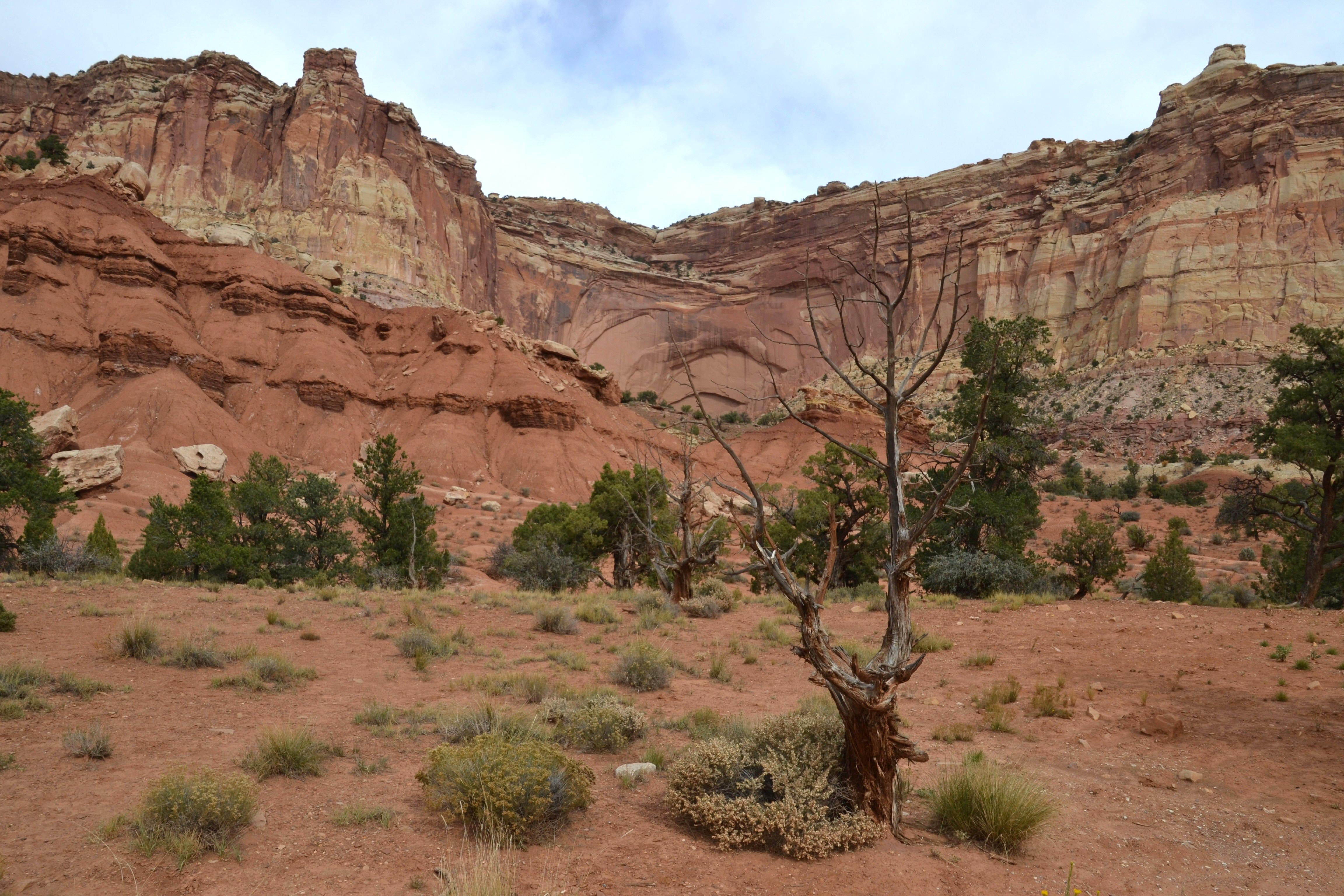 Lago en Capitol Reef National Park