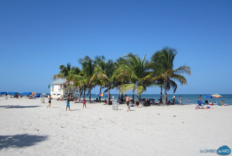Beach in Crandon Beach