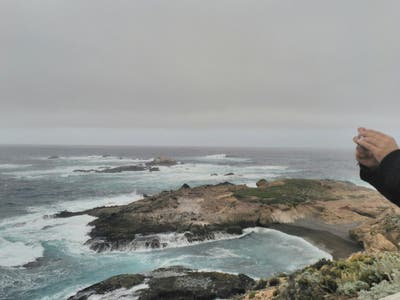 Reserva Point Lobos