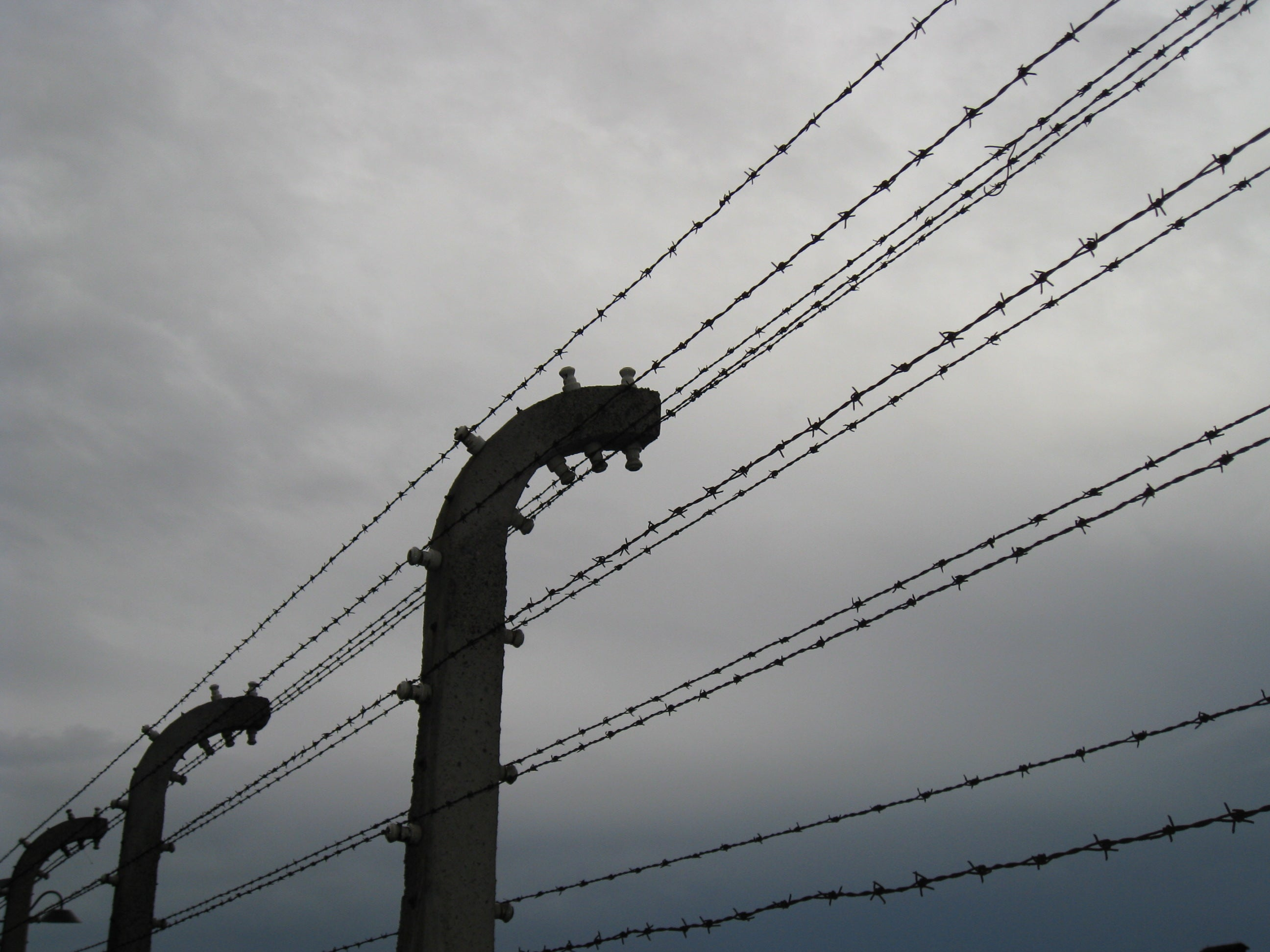 Barbed wire of Birkenau