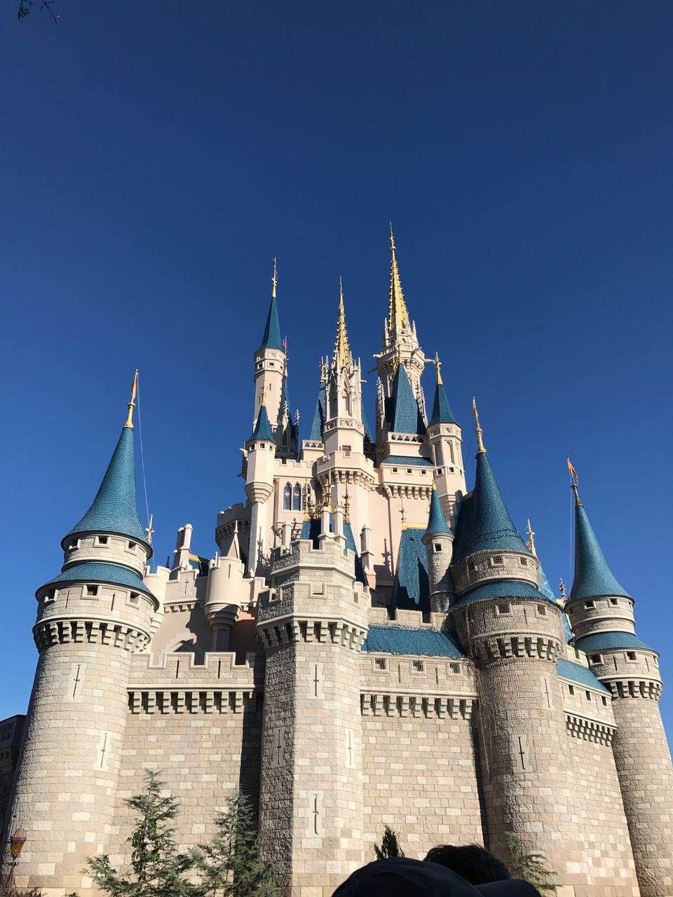 Castillo en Walt Disney World