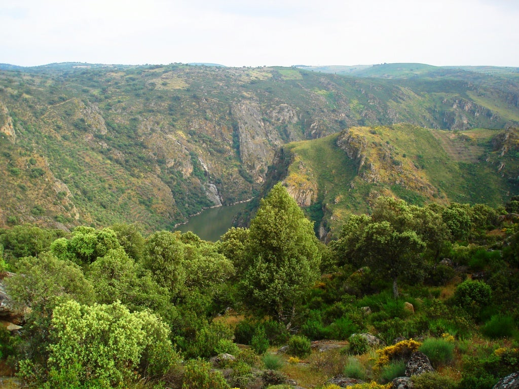 Parque Natural do Douro Internacional - Los Arribes del Duero