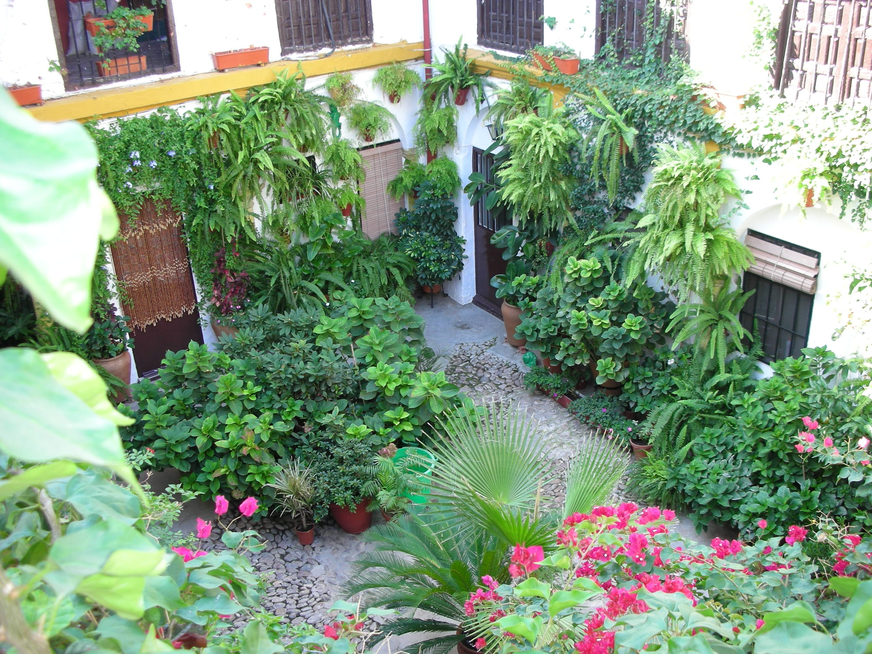 The Courtyards of Cordoba