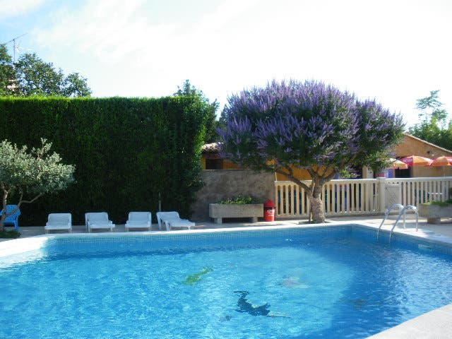 Photos de piscine camping pegomas saint r my de for Camping avignon avec piscine