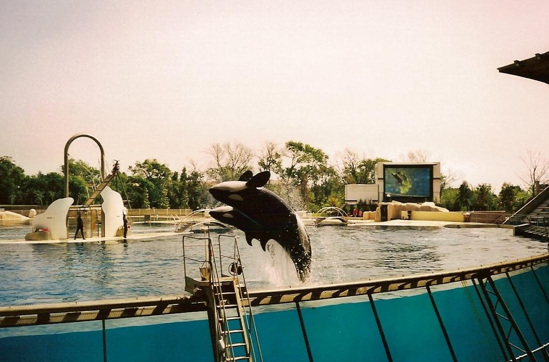 Mar en Marineland