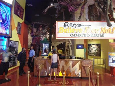 Museo Believe Or Not