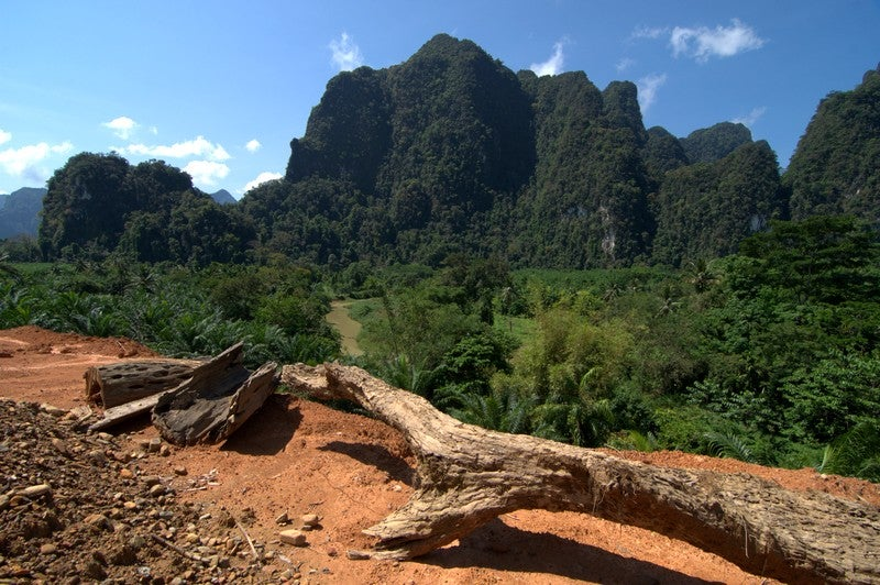Trekking in the National Park Khlong Phanom
