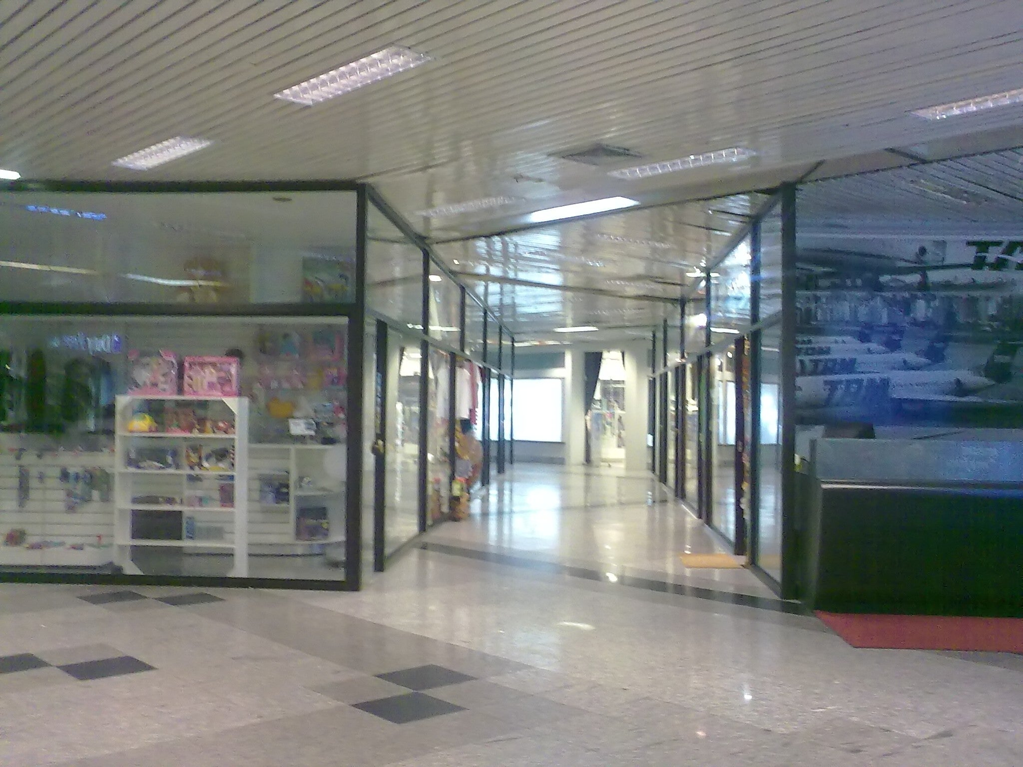 Silvio Pettirossi International Airport