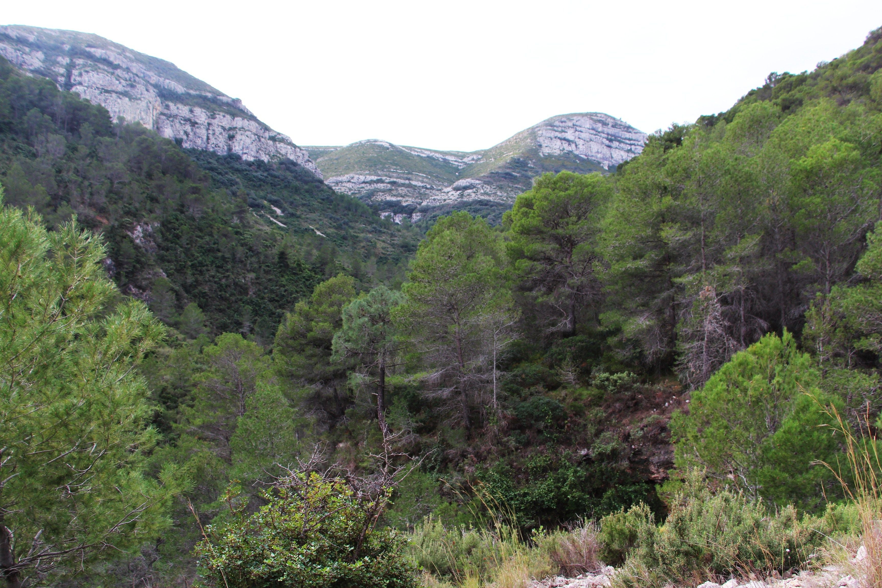 Valley in Ruta La Font de Lloret