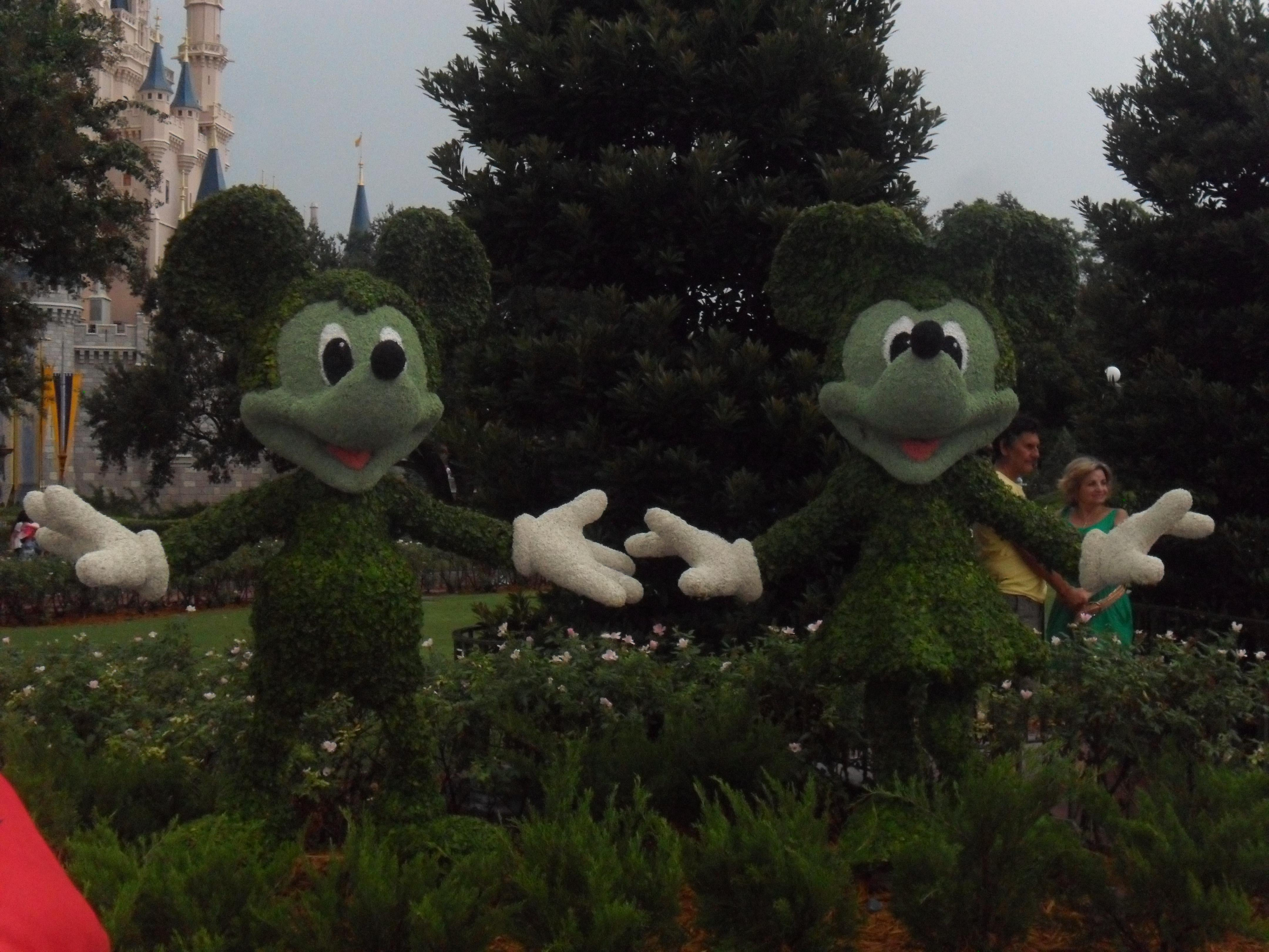 Verde en Walt Disney World