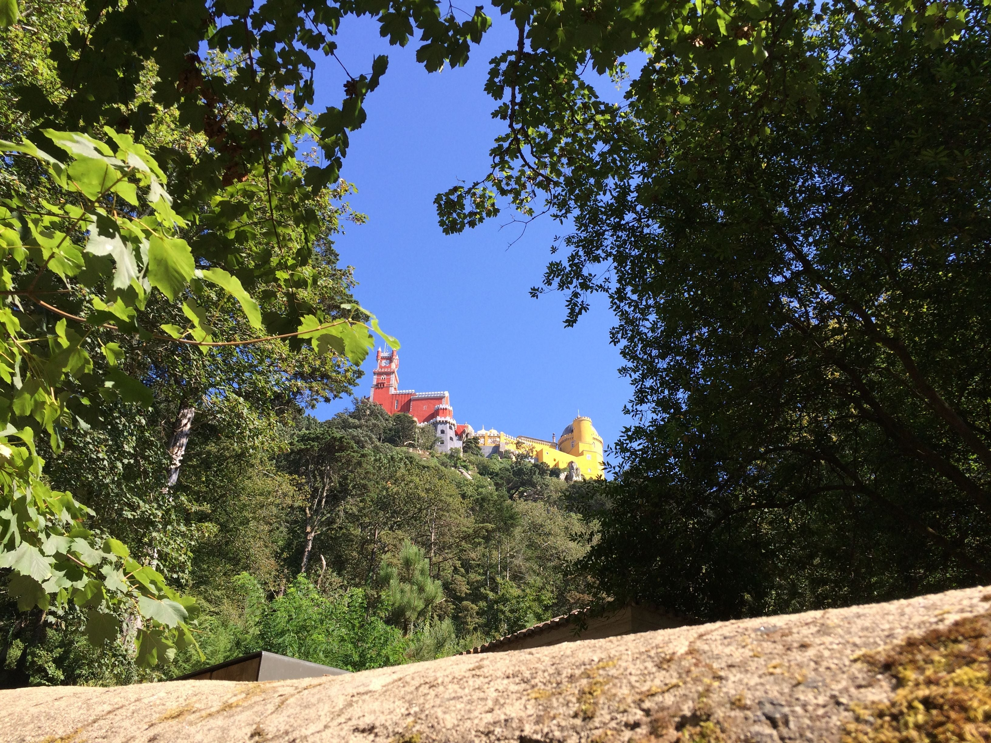 Wilderness in Pena National Palace