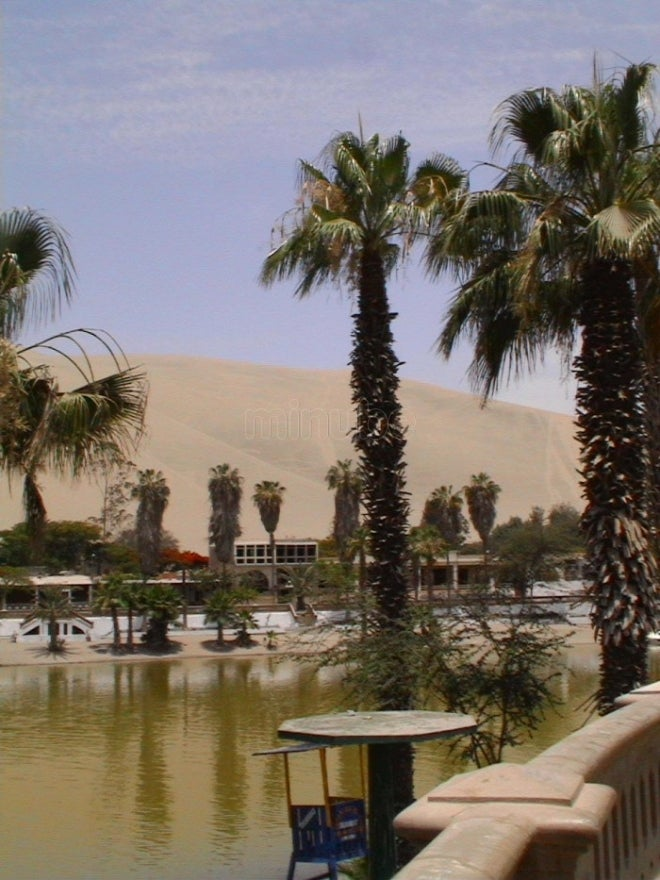 Resort en Oasis de Huacachina