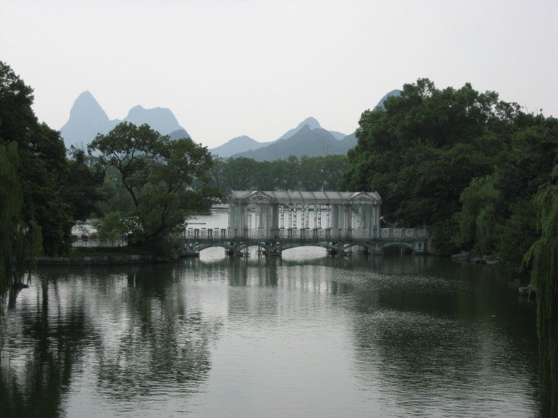 Árbol en Guilin