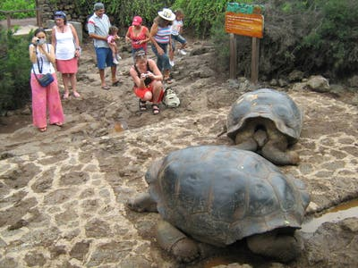 Parco nazionale delle isole Galapagos