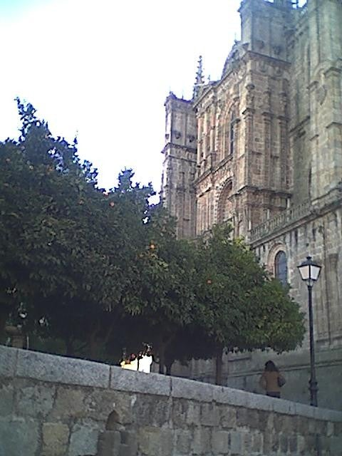 Pared en Catedral de Plasencia