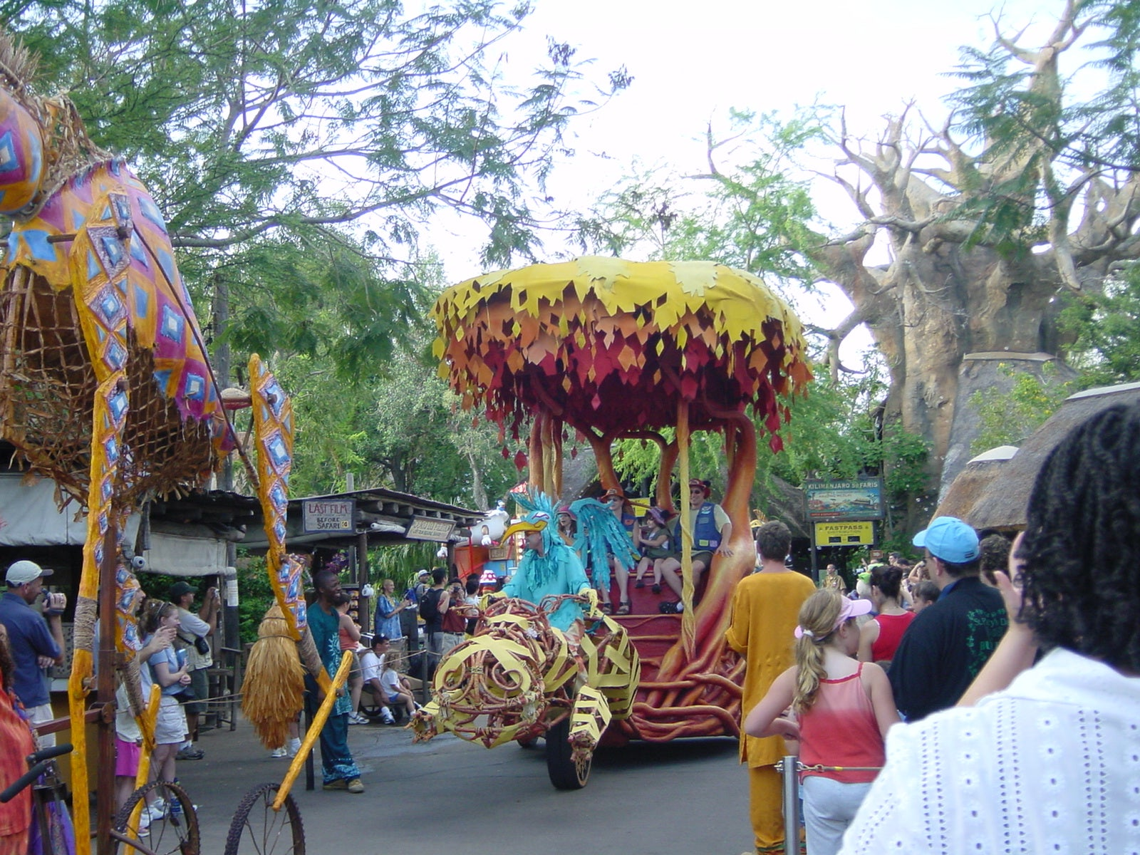 Amarillo en Disney Animal Kingdom