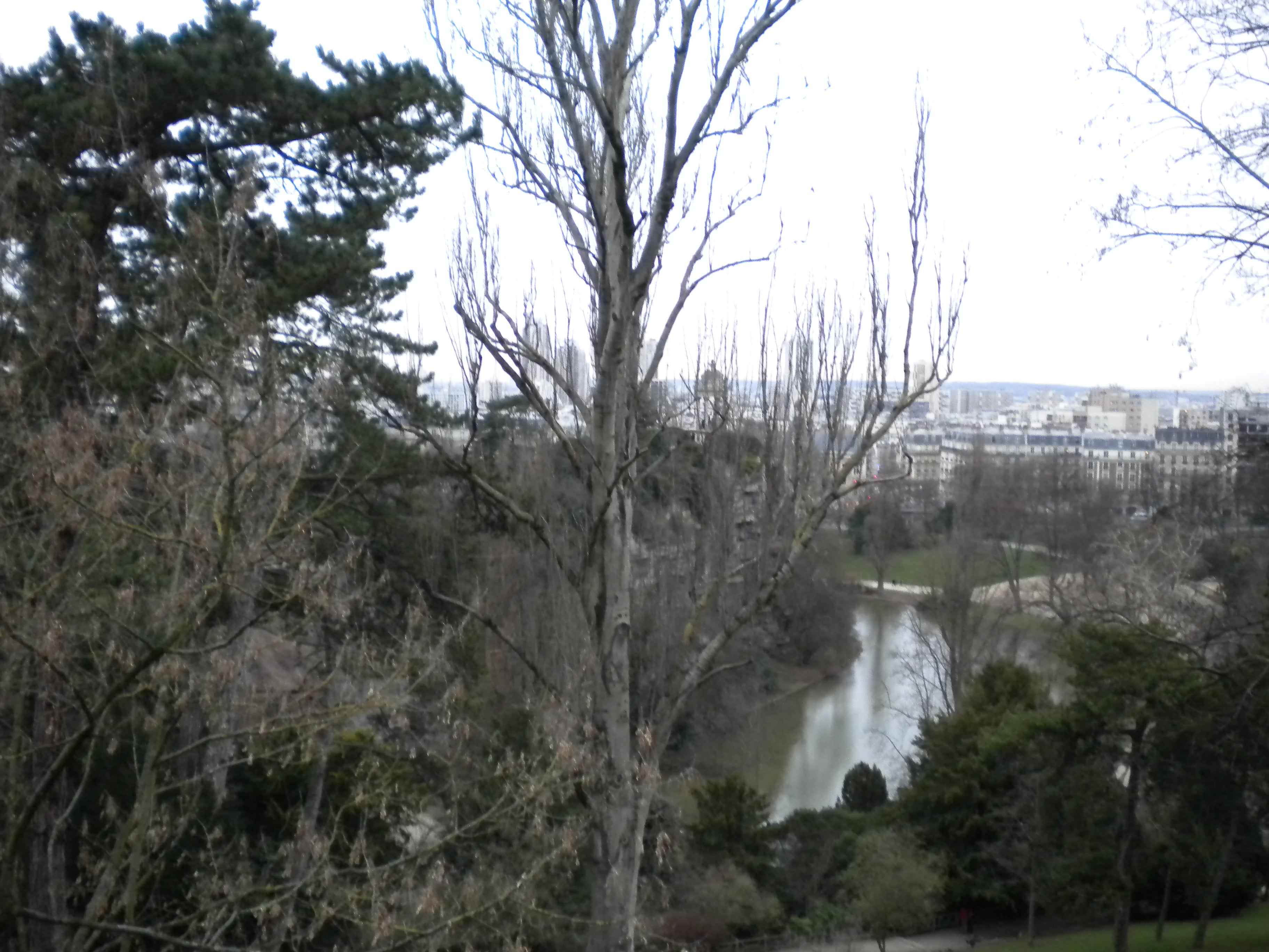 Bosque en Parque Buttes Chaumont