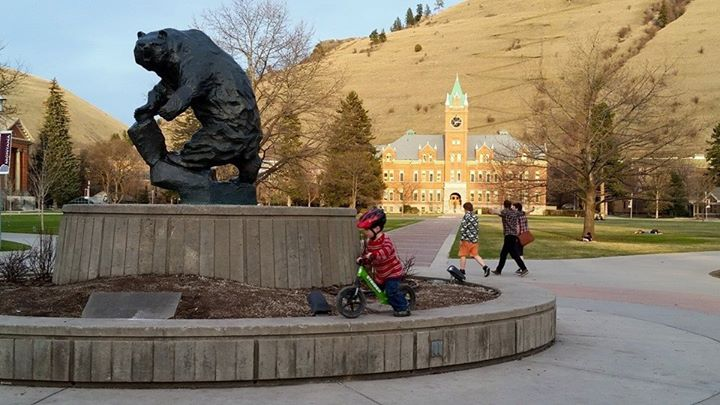 Grizzly Statue