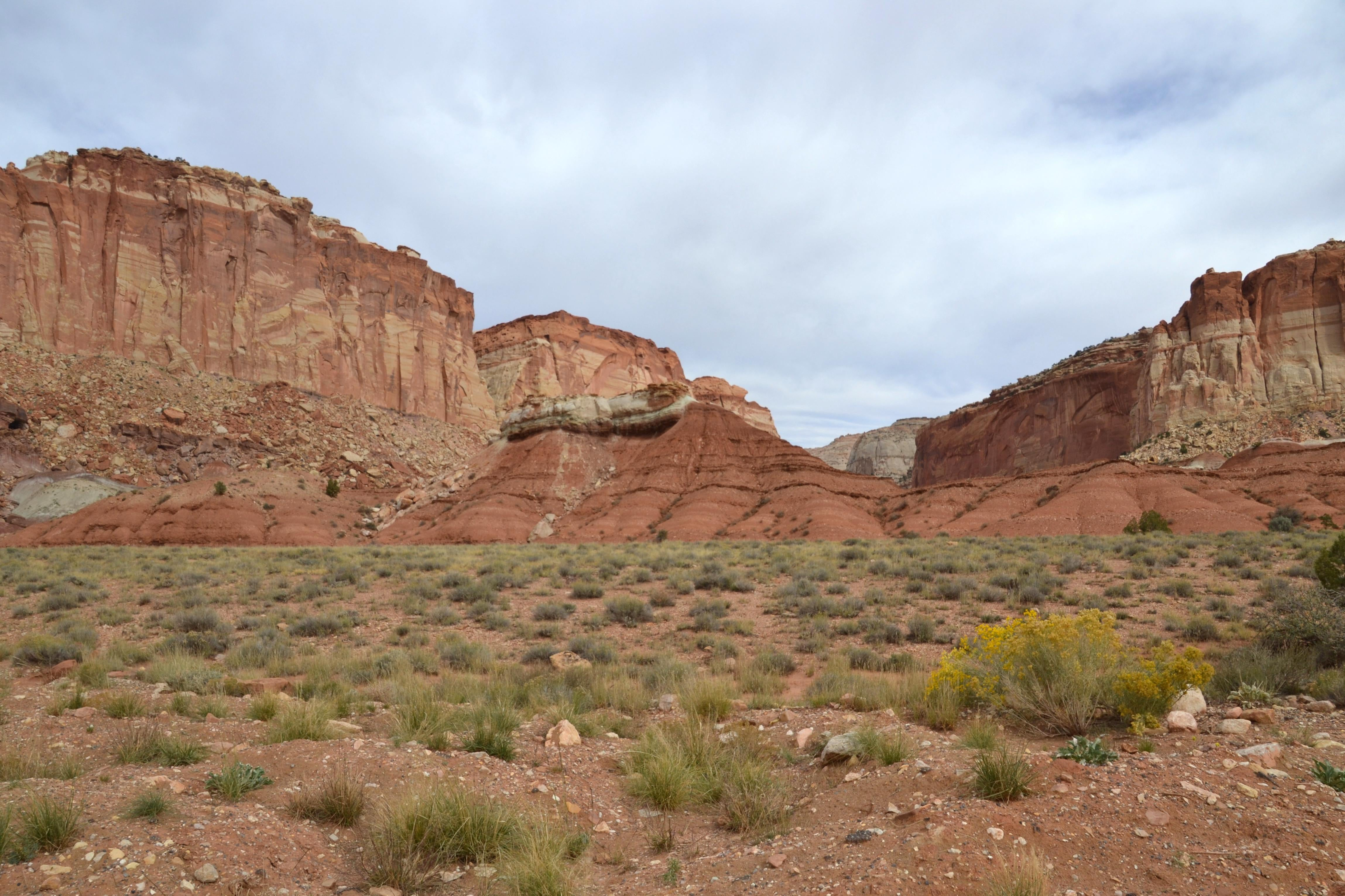 Naturaleza en Capitol Reef National Park