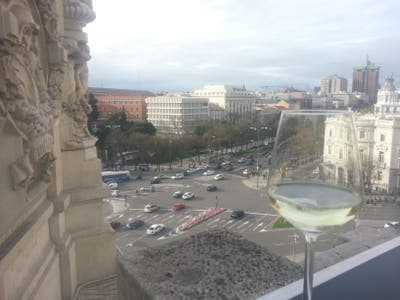 Photos Of Palacio De Cibeles Roof Terrace Images