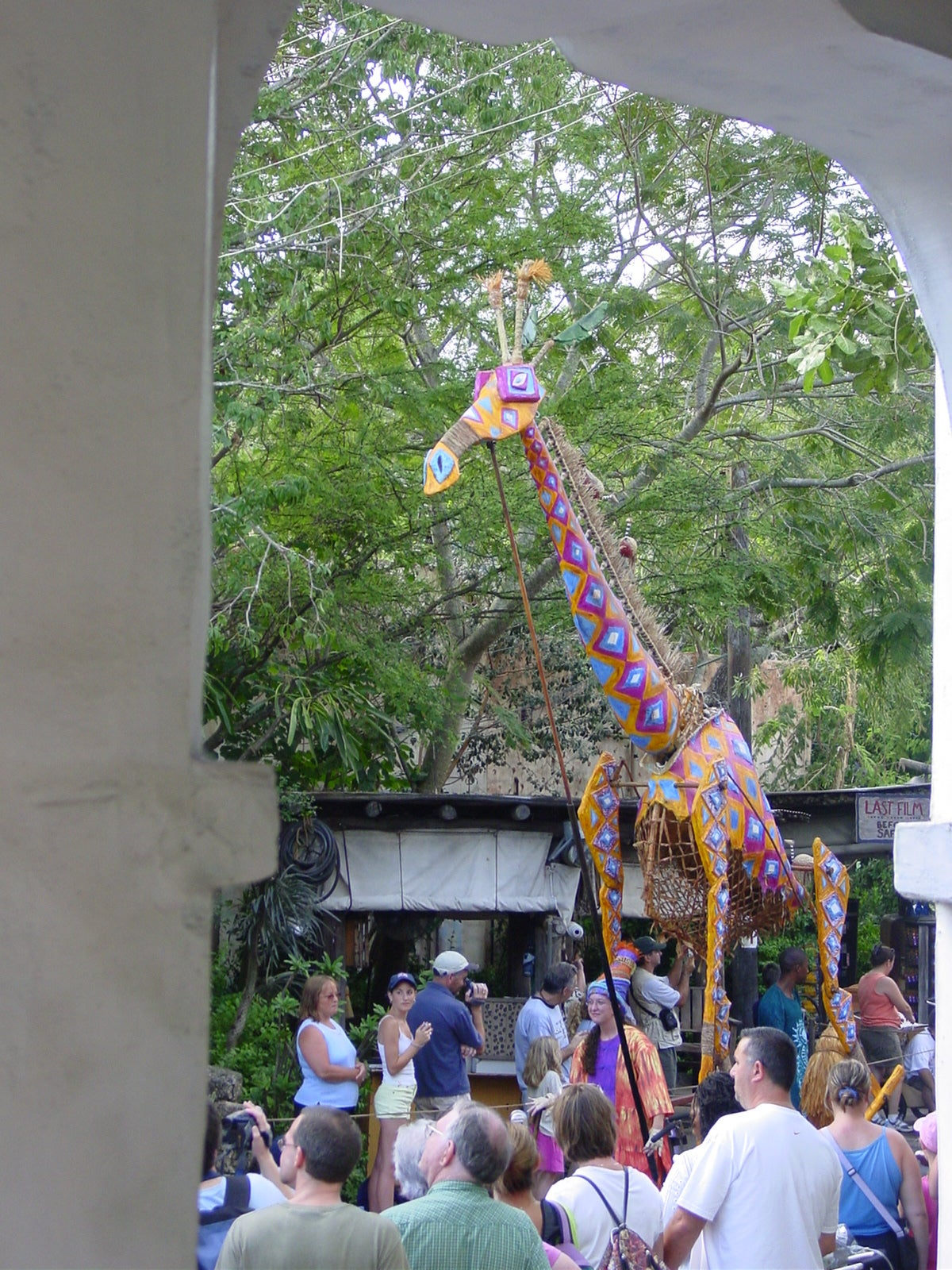 Arco en Disney Animal Kingdom