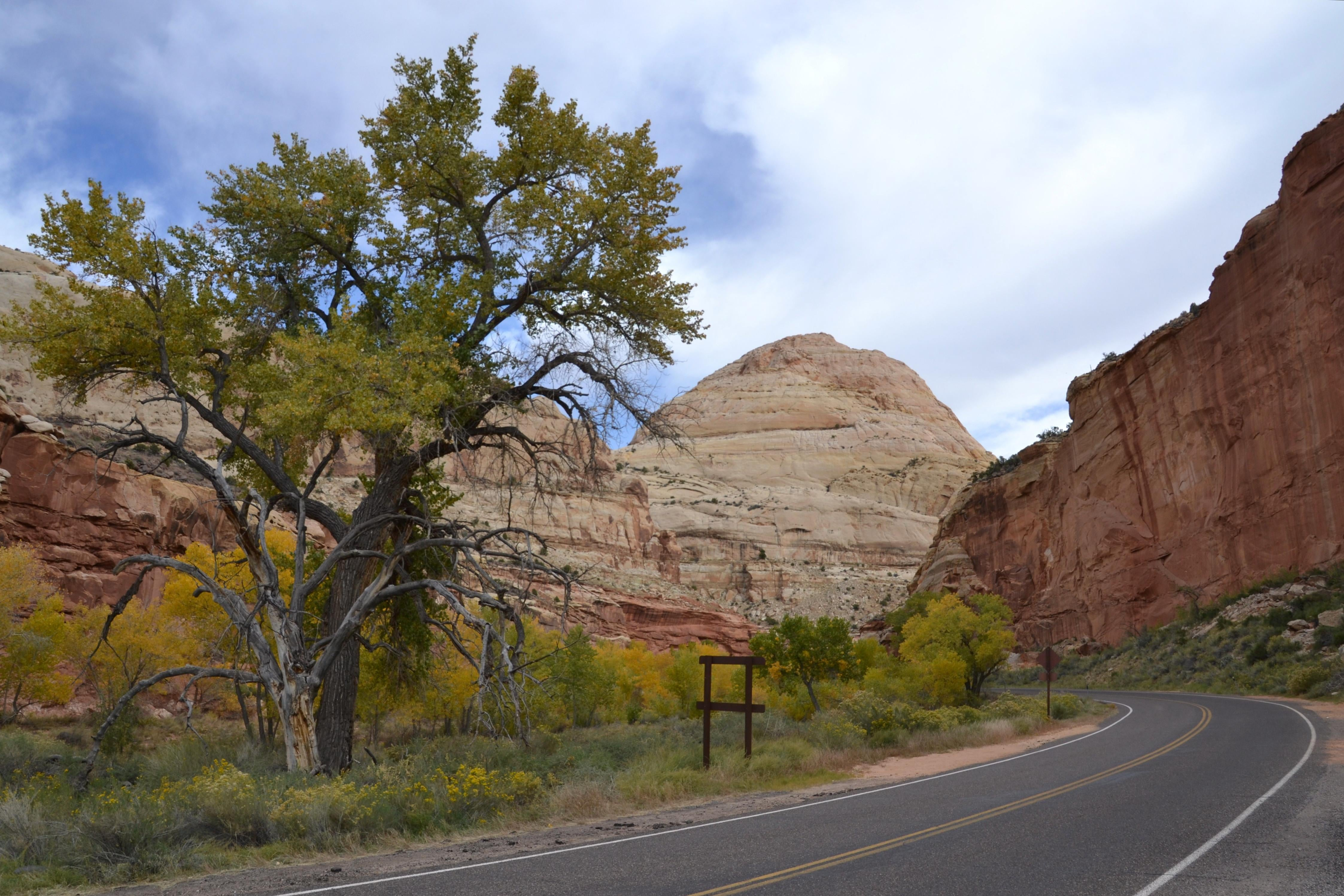 Calle en Capitol Reef National Park