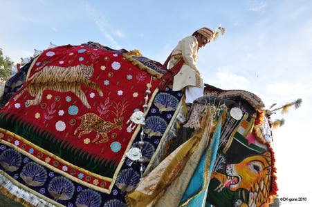 The Elephants Festival, Jaipur, India