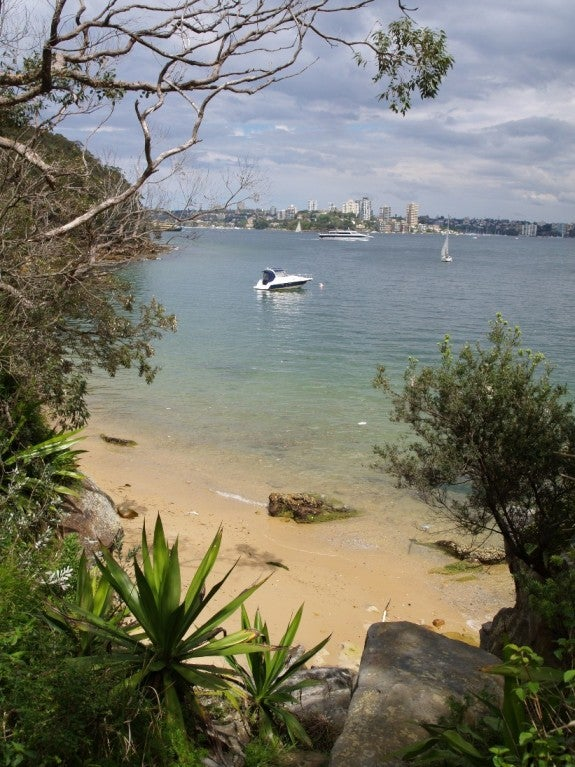 Vacaciones en De Taronga Wharf a North Head