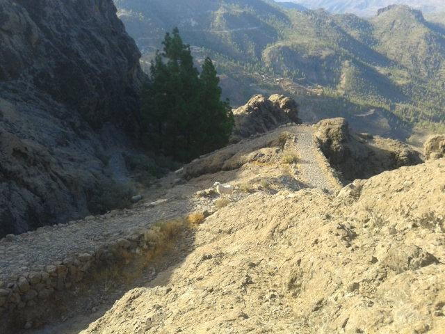 Mountain in Transgrancanaria 2016 - 125 kms