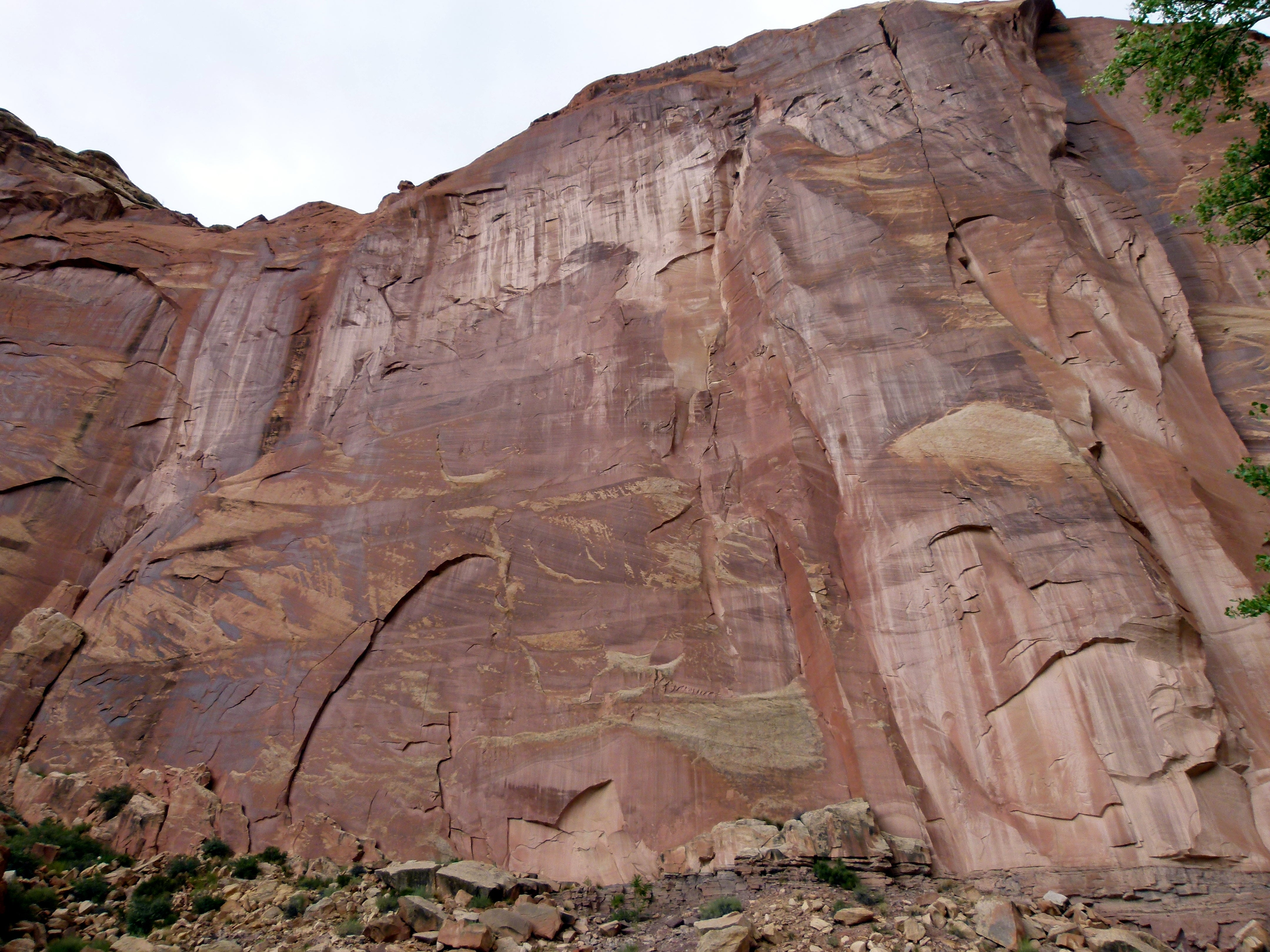 Afloramiento en Capitol Reef National Park