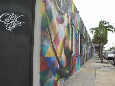 R House Wynwood