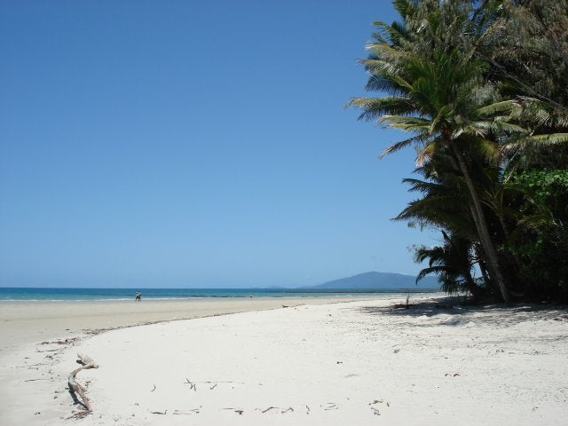 Costa en Cape Tribulation
