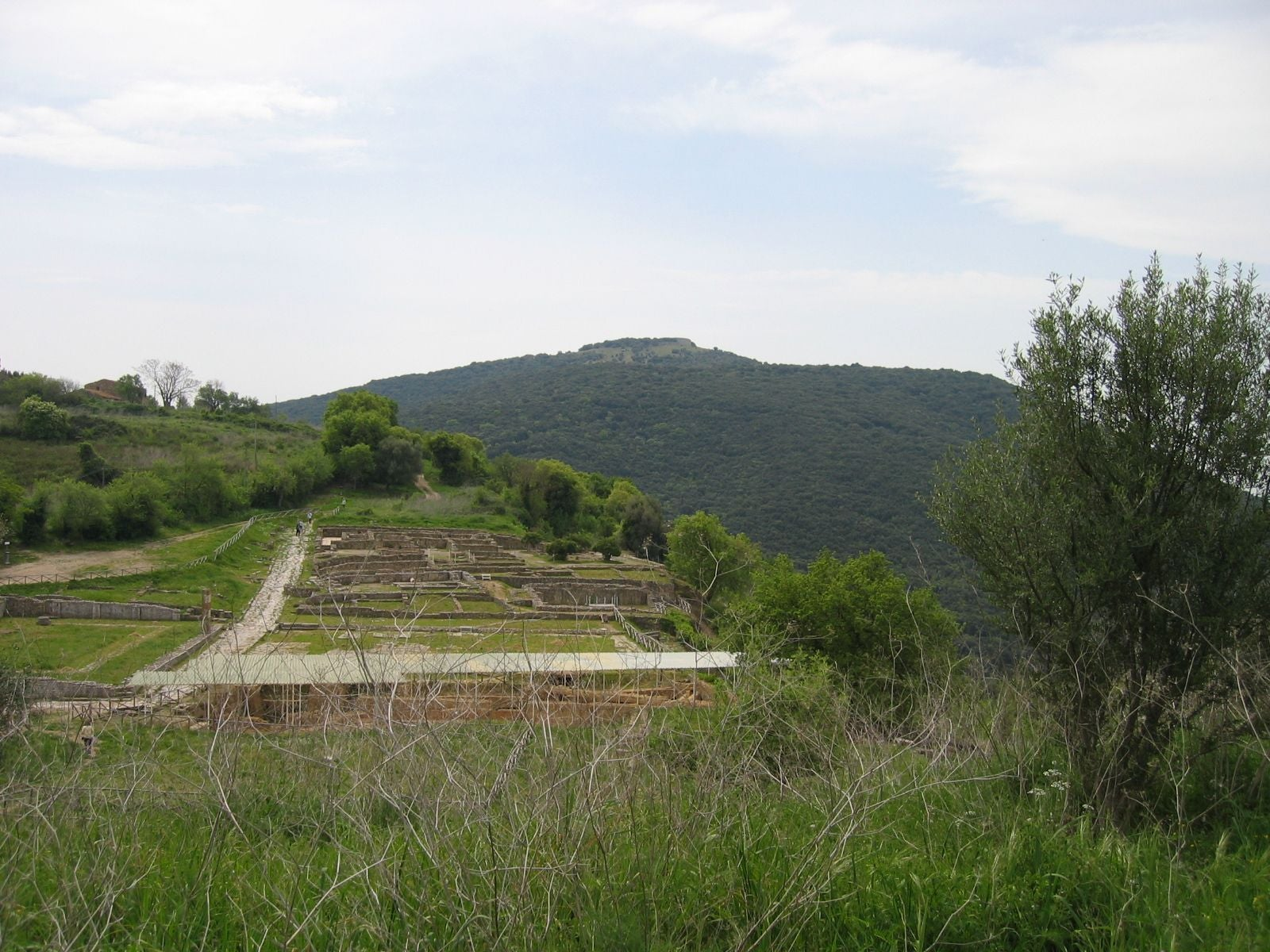 Parco archeologico di Roselle