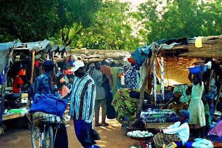 Market on the Banks of the Niger