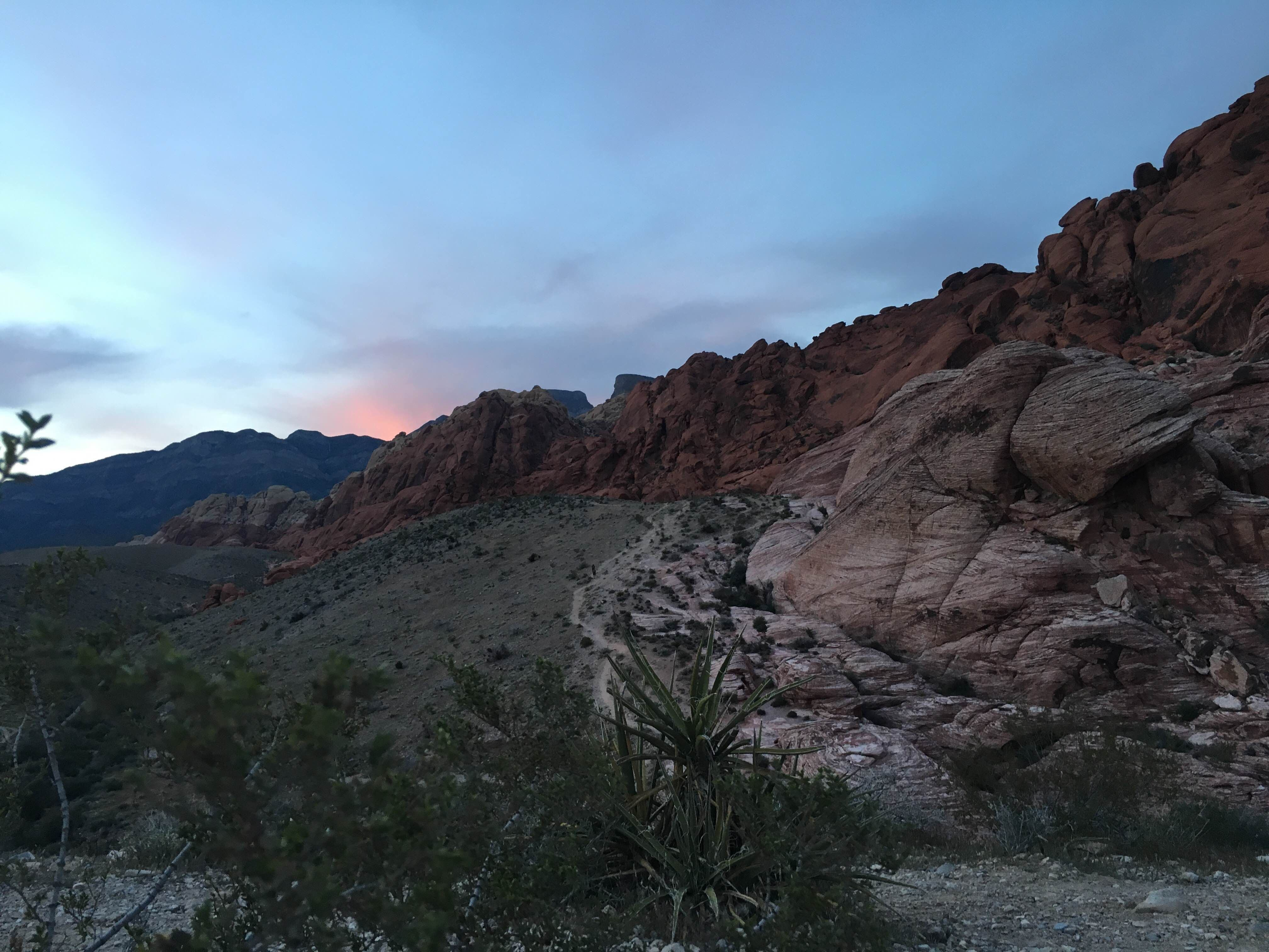 Mar en Red Rock Canyon National Conservation Area