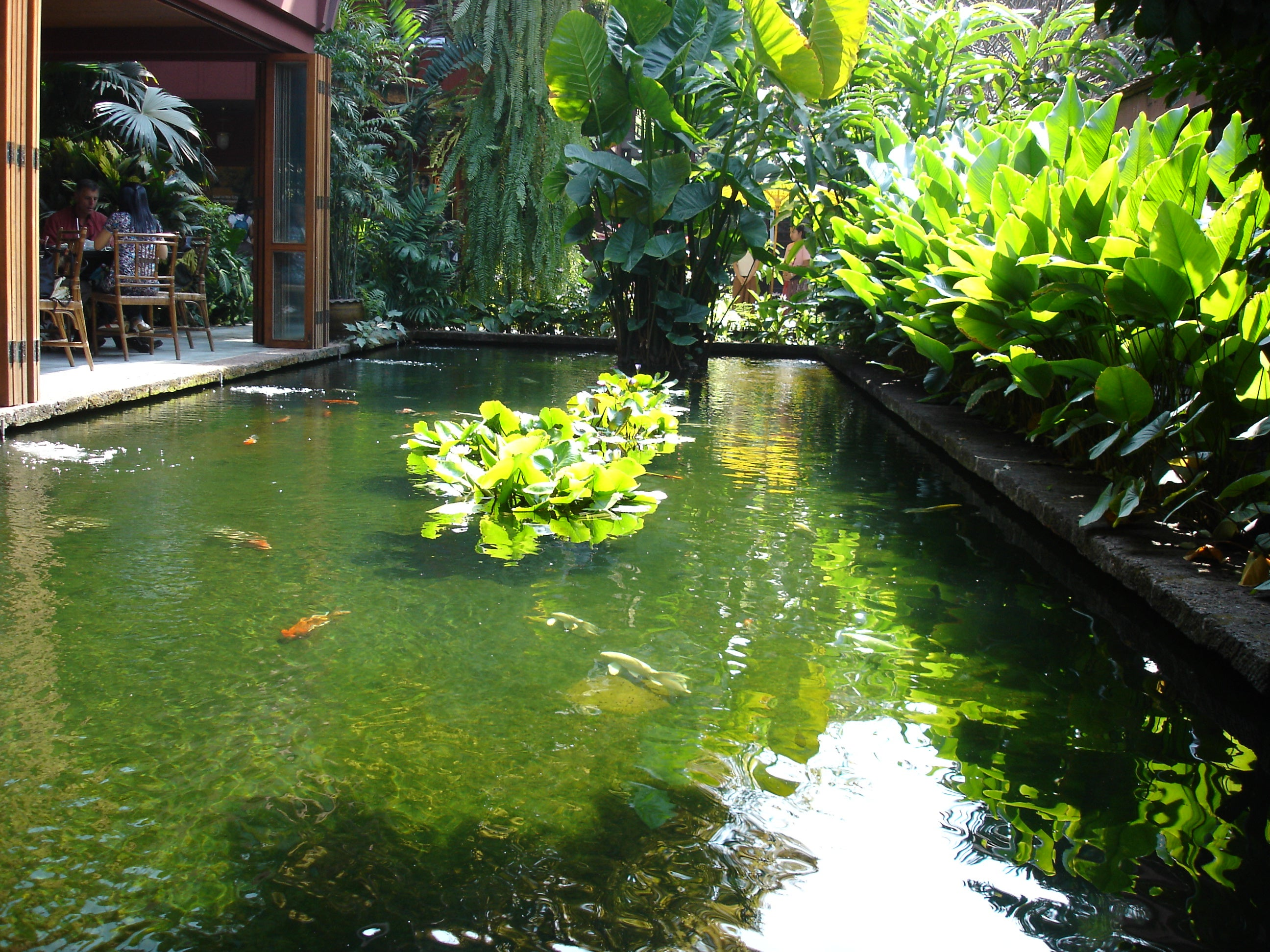 Charco en Casa de Jim Thompson
